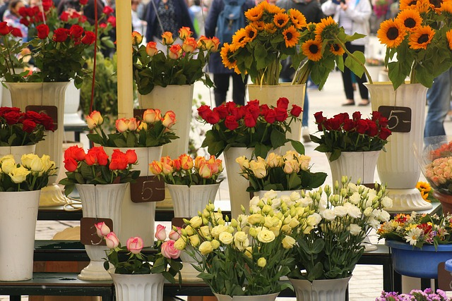 květiny na prodej